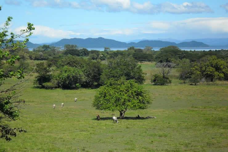 Landscape,_Nicoya_Peninsula,_Costa_Rica